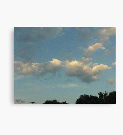 Fluffy Blue 2 Canvas Print
