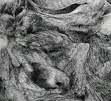 Sleeping Familiar's 12. by - nawroski -