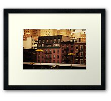 High Line Park Wild Flowers Framed Print