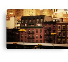 High Line Park Wild Flowers Canvas Print
