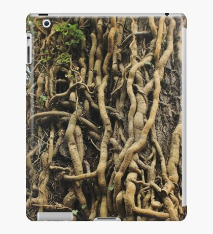 Enchanted Roots of Cong Abbey Ireland iPad Case/Skin