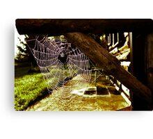 Spider House Canvas Print