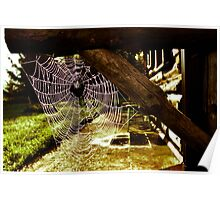 Spider House Poster