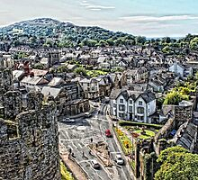 A View of Conwy   by Selina Ryles
