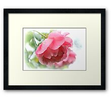 A Showery Day Framed Print