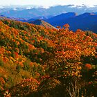 VIEW,NEWFOUND GAP ROAD by Chuck Wickham
