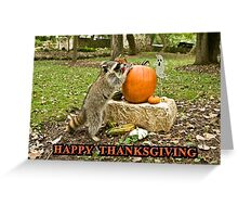 Raccoon Thanksgiving Greeting Card