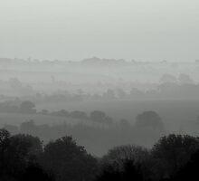 Morning Fog by Paul Finnegan