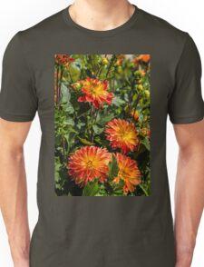 France. Rigny-Ussé. Château d'Ussé. Garden. Flowers. Unisex T-Shirt