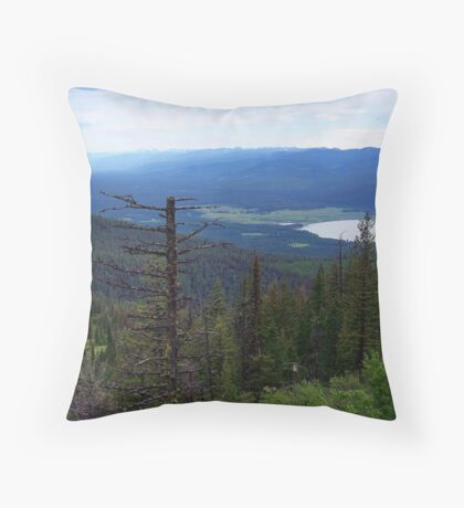 Swan Lake (Montana, USA) Throw Pillow