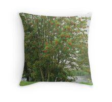 Cwmcelyn Pond Throw Pillow