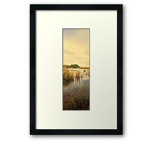 Purni panorama Framed Print