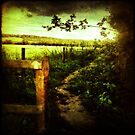 To The Ridgeway by Lucy Martin