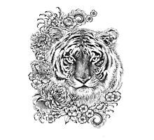 Year of the Tiger 2 Photographic Print