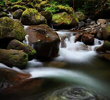 Oneonta Creek by Tula Top