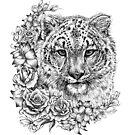 Snow Leopard by LKBurke29