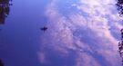 Reflections of Flight by Odille Esmonde-Morgan