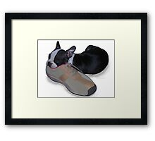 Buster sleeping Framed Print