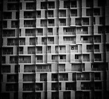 Modern Life by Linda Cutche