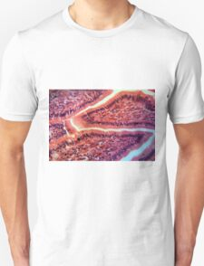 Intestine Cells under the Microscope T-Shirt