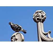 The Cathedral - birds eye view Photographic Print