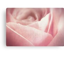 Fleur [Print and iPhone / iPod Case] Canvas Print