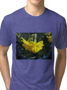 Nodding Daffodils Tri-blend T-Shirt