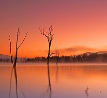 Sunrises and Sunsets of S.E. Queensland by Beth  Wode