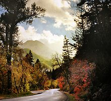 American Fork Canyon - Road by Ryan Houston