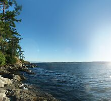 Rugged Coast (panorama) by James Zickmantel