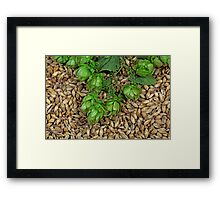 Hops and Malt Framed Print