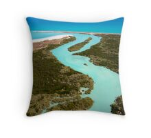 Aerial view of the Willie Creek Pearl Farm Throw Pillow