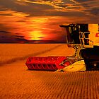 Norfolk Harvest Summer Sunset  by Darren Burroughs