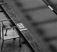 8 Feet in the Rain by Pichard