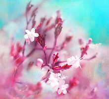 Pinkglow by ♛ VIAINA