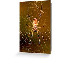 banana spider symmetry  Greeting Card