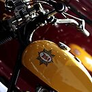 1959 BSA C15 250cc Trials Motorcycle by pix-elle