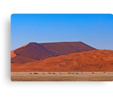 Life in the desert (II) Canvas Print