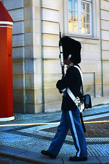 Guard on Patrol by Jennifer Lam