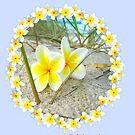 Frangipani Beach - Mother Birthday Card by judygal