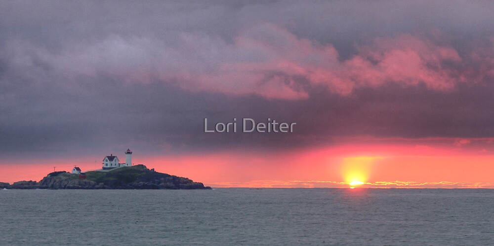 Pink in the Morning by Lori Deiter