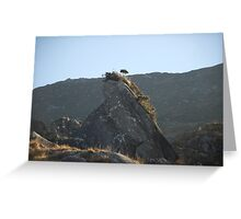 Kerry Mountains Killarney lakes in Ireland 5 Greeting Card
