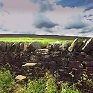 The Stile by John Hare