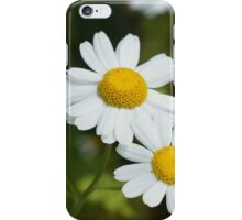 Daisy today iPhone Case/Skin
