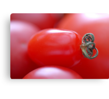 Little Tomato Canvas Print