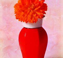 Calendula In Chinese Vase by inkedsandra