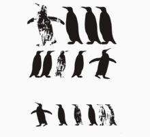 ZOOlogy - Penguin I by fiar