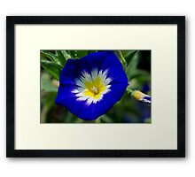 The Master Gardeners - No. 2 Framed Print