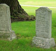 Cemetery in Altona by rhamm