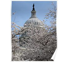 Statue of Freedom among Cherry Blossoms Poster